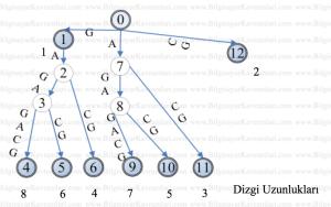 reverse_factoring_algo6